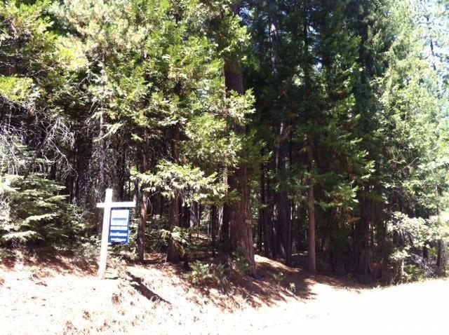 5373 Wooded Glen Rd, Grizzly Flats, CA 95636