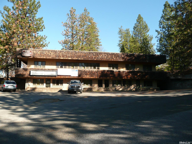 333 Canyon Ct, Colfax, CA 95713