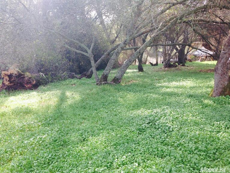 4204 Kilt Circle, El Dorado Hills, CA 95762