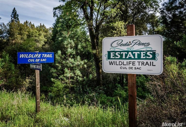 26 Wildlife Trail Dr, Fiddletown, CA 95629