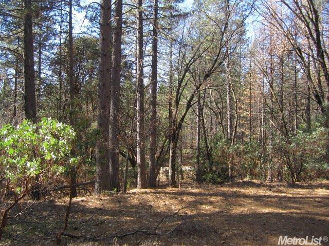 3832 Stope Dr, Placerville, CA 95667