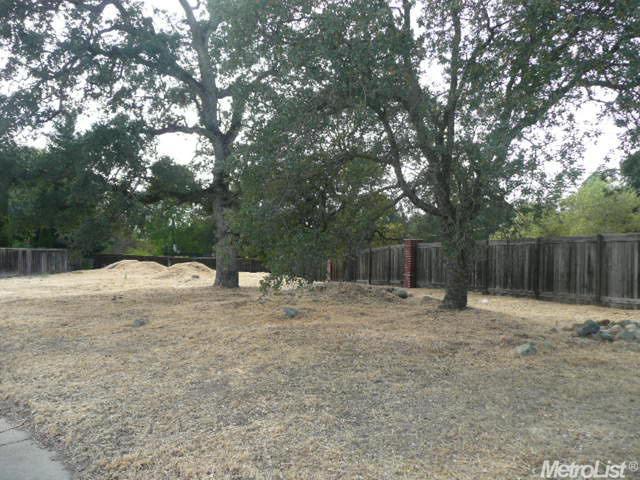 153 Chimney Bluff Ct, Folsom, CA 95630