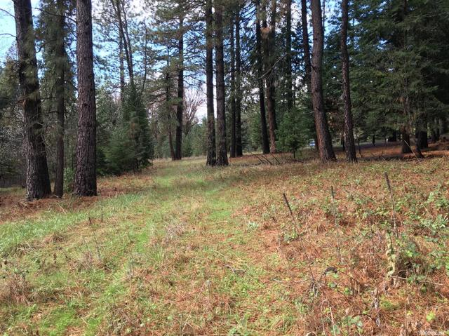 0 Grizzly Flat Rd, Somerset, CA 95684