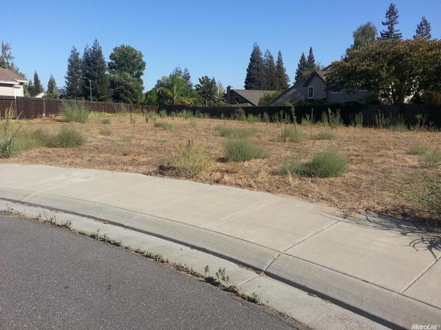 868 Oak Terrace Ct, Ripon, CA 95366