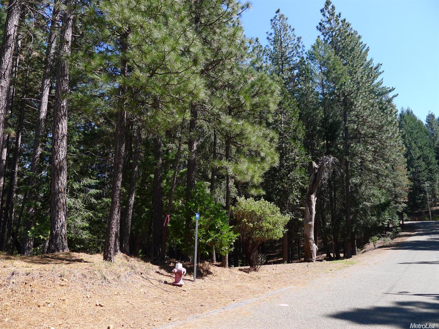 5182 Pine Ridge, Grizzly Flats, CA 95636