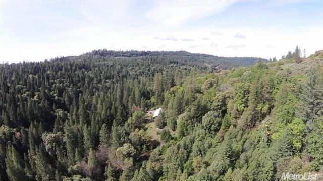 16464 Pioneer Creek Rd, Pioneer, CA