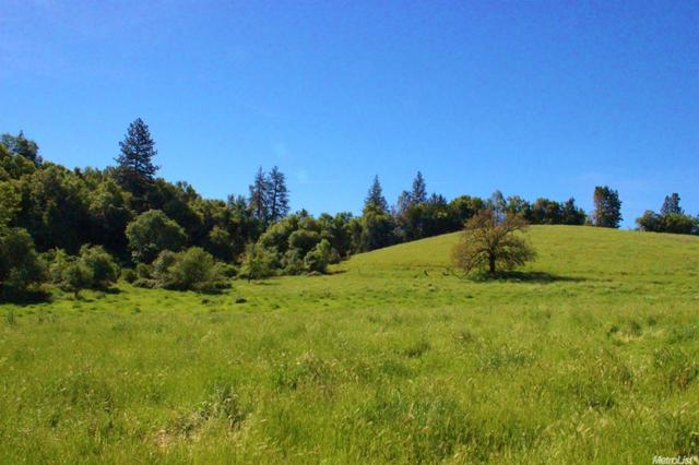 0 Caswell Rd, Placerville, CA 95667