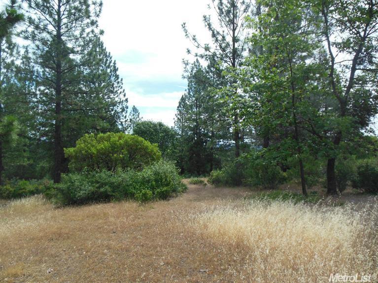 17370 Winchester Club Drive, Meadow Vista, CA 95722