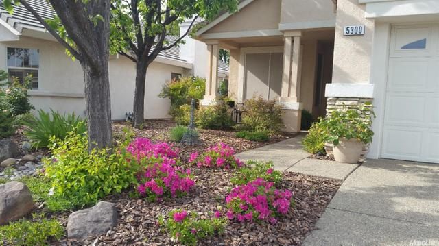 5300 Sugar Pine Loop, Roseville CA 95747
