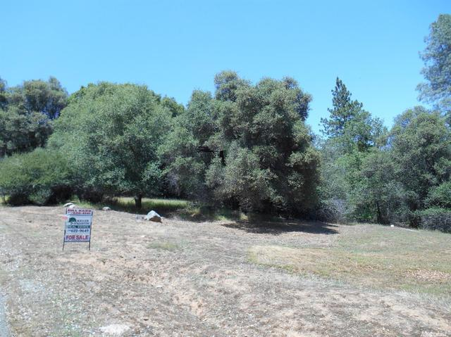 0 Oak Leaf Ct, Placerville, CA 95667