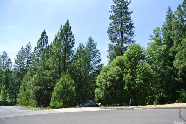 22058 Farrier Ct, Foresthill, CA 95631