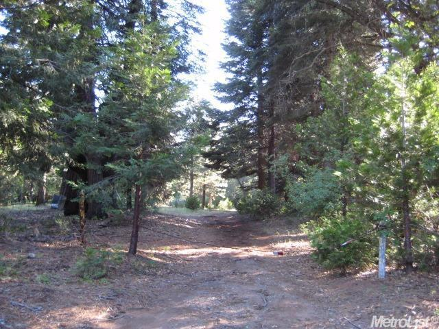 3150 Sunday Ridge Rd, Grizzly Flats, CA 95636