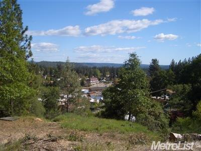133 Hunter Ln, Colfax, CA 95713