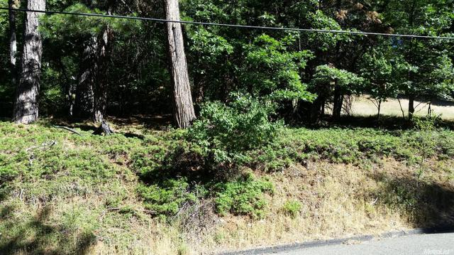0 Pine Cone Dr, Pollock Pines, CA 95726