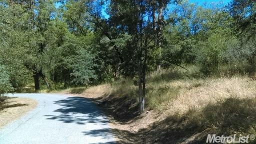 6220 Lynx Ridge Rd, Garden Valley, CA 95633