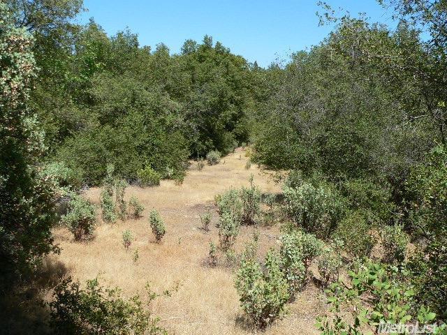 14007 Cook Ranch Road, Sutter Creek, CA 95685