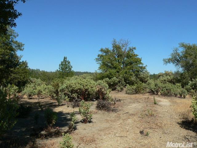 14007 Cook Ranch Rd, Sutter Creek, CA 95685