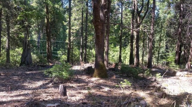 6450 Topaz Dr, Pollock Pines, CA 95726