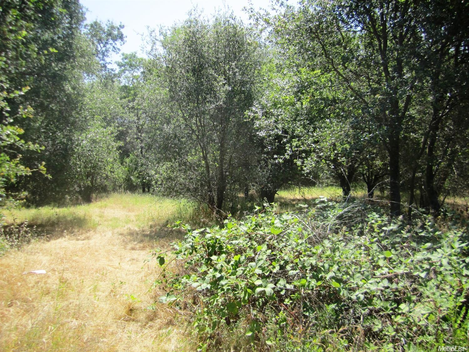 73 Vacant Land Fruitvale, Newcastle, CA 95658