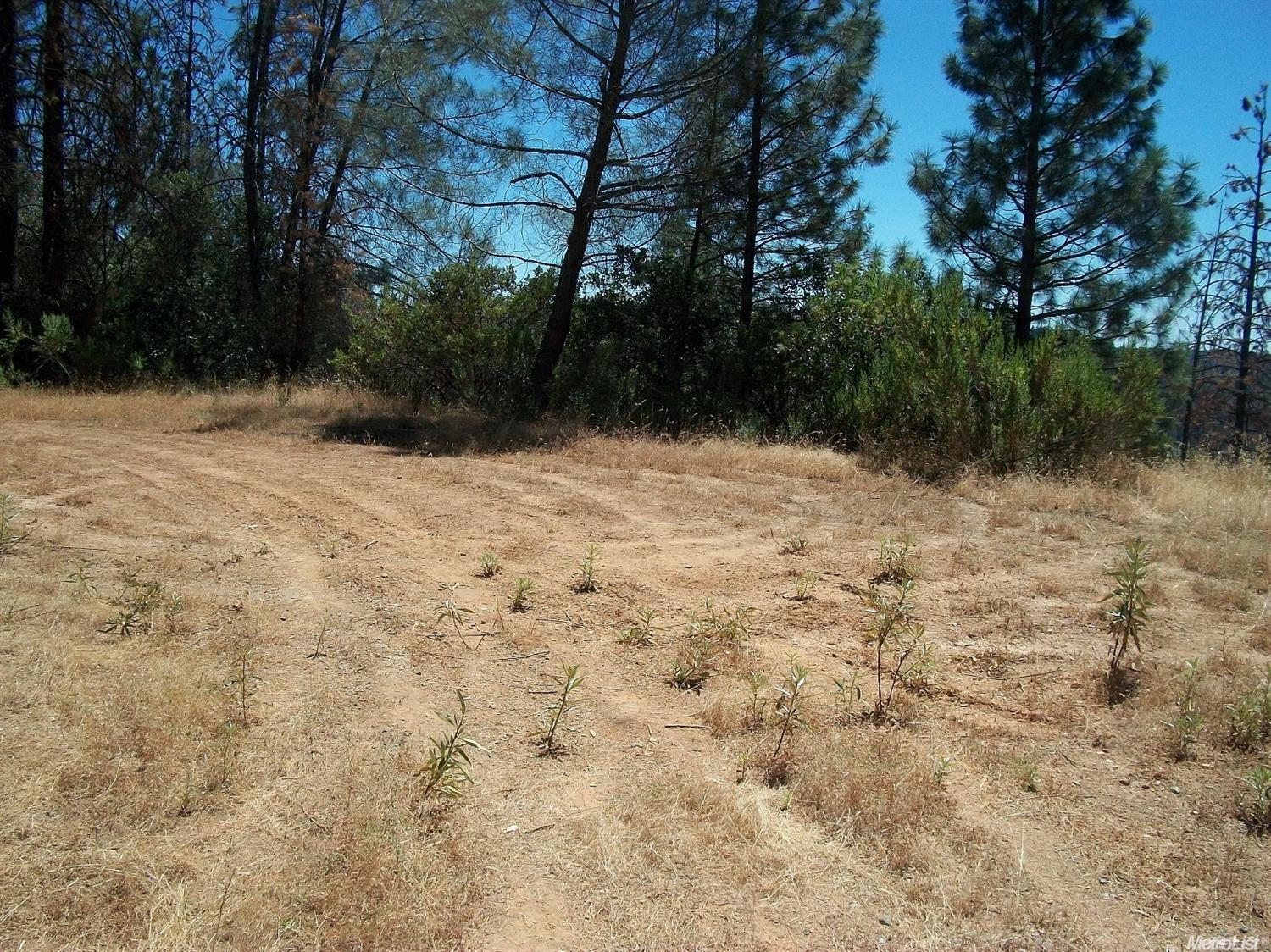 6420 Dark Canyon Road, Placerville, CA 95667