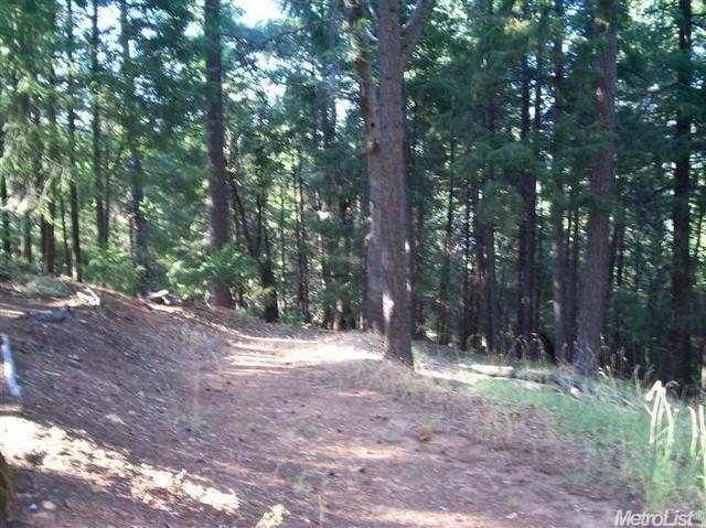 0 Begonia Dr, Pollock Pines, CA 95726