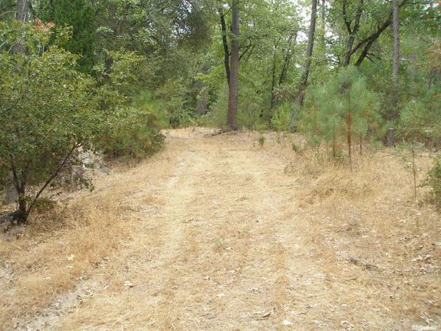 4885 China Camp Dr, Placerville, CA 95667