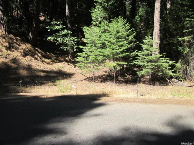 5031 Deerwood Dr, Grizzly Flats, CA 95636