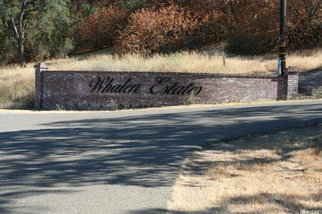 55 Daunte Ct, Valley Springs, CA 95252