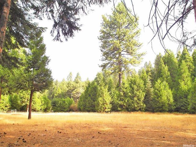 27045 State Highway 88, Pioneer, CA 95666