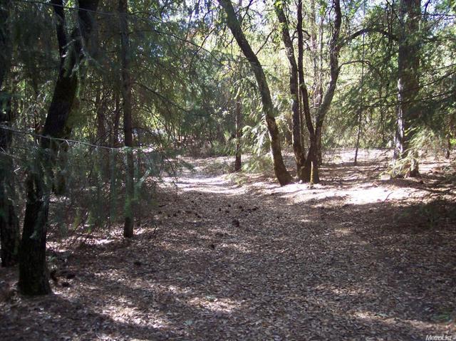 3121 Conifer Ct, Garden Valley, CA 95633