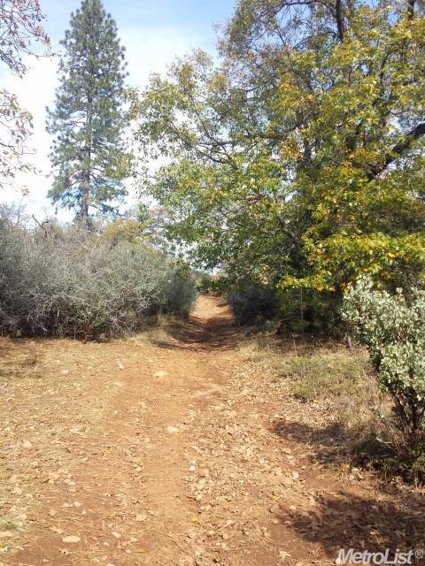 0 Canchalagua Dr, Pollock Pines, CA 95726