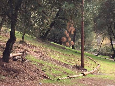 0 Canyon Way, Colfax, CA 95713