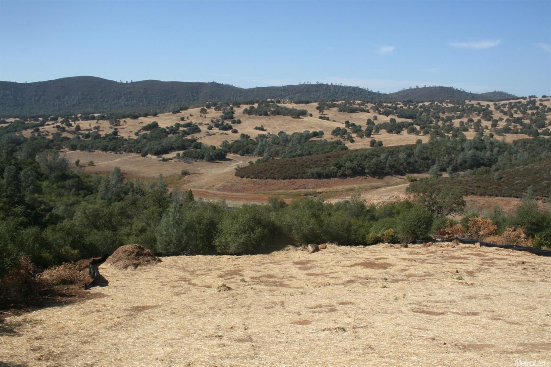 130 Opus One Court, El Dorado Hills, CA 95762