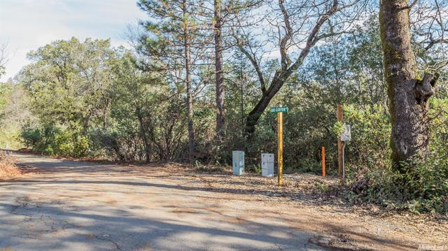 11 Gas Canyon Ct, Foresthill, CA 95631
