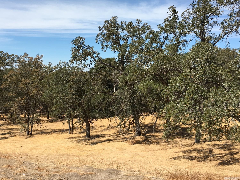 1754 Camino Verdera, Lincoln, CA 95648