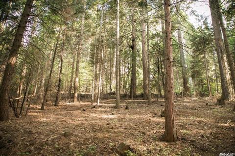 4220 Pegasus Trl, Pollock Pines, CA 95726