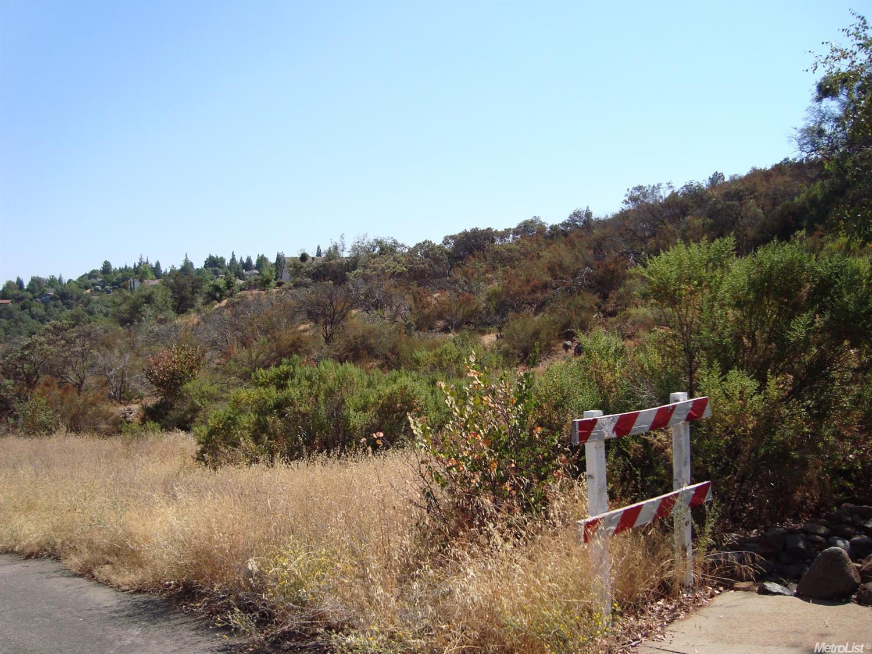 5 Wilkinson Road, Cameron Park, CA 95682