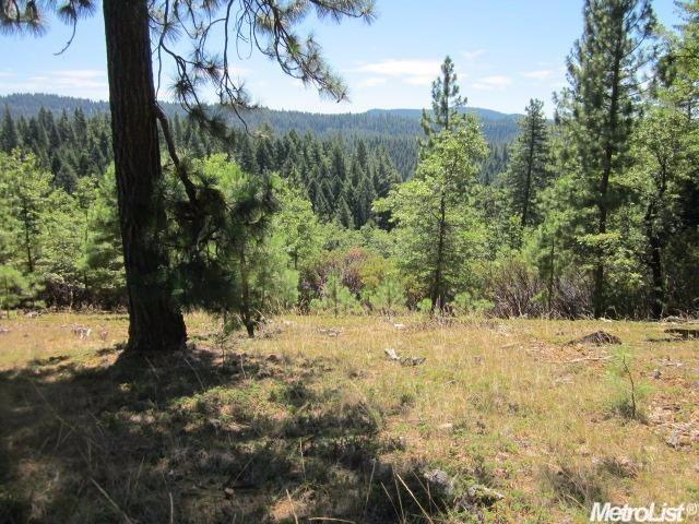 5691 Wildrose Dr, Grizzly Flats, CA 95636