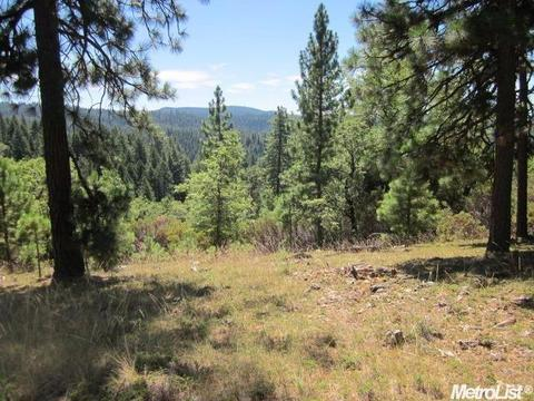 5701 Wildrose, Grizzly Flats, CA 95636
