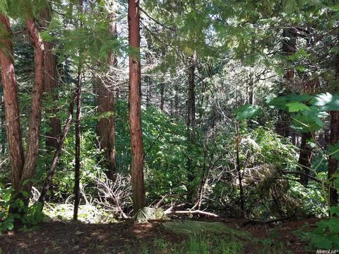 6833 Onyx, Pollock Pines, CA 95726