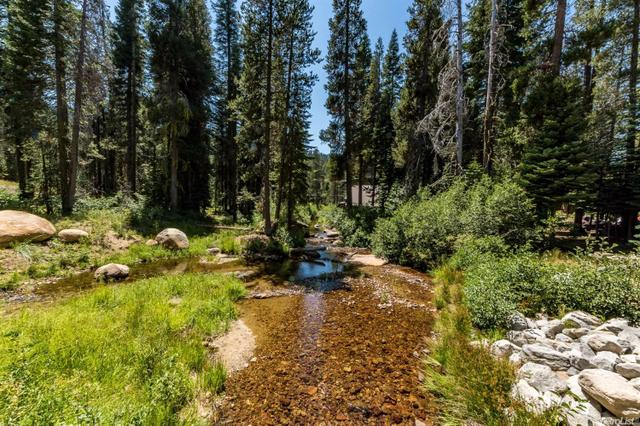 9250 Bryant Creek Rd #4, Twin Bridges, CA 95735