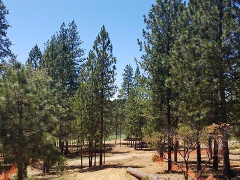 6045 Holly Oak Lane Ln, Meadow Vista, CA 95722