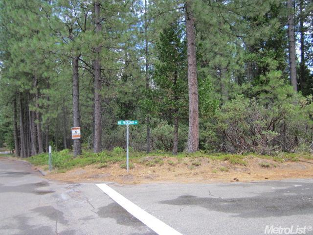 0 Mount Pleasant Dr, Grizzly Flats, CA 95636