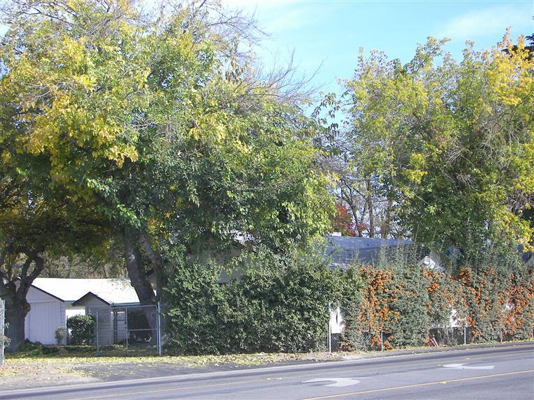 5602 E Nees Ave, Clovis, CA