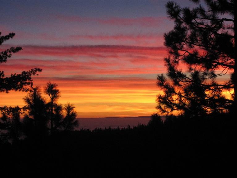 42373 Canyon Vista Lane, Shaver Lake, CA 93664