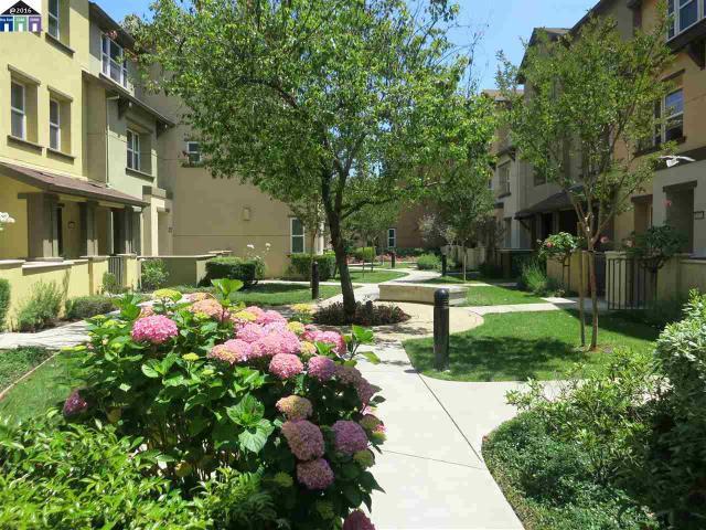 25409 Huntwood Hayward, CA 94544