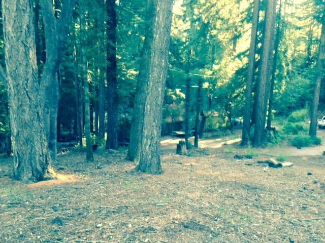 0 Woodland, Boulder Creek, CA 95006
