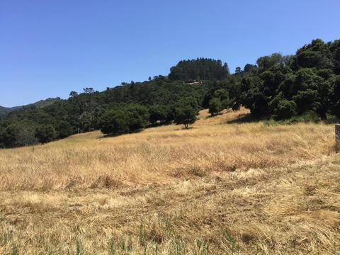 8155 Manjares, Monterey, CA 93940