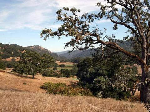 37 Pronghorn Run, Carmel, CA 93923