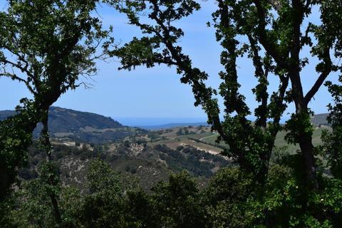 13 Long Ridge Trl, Carmel, CA 93923
